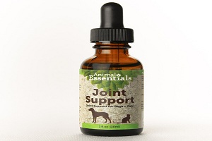 Are Natural Pet Supplements Safe and Effective?