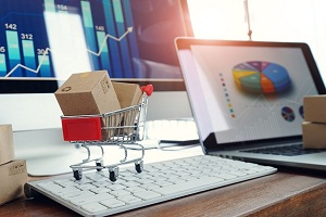 Image for The Best Shopify SEO Tips For New eCommerce Stores with ID of: 4809094