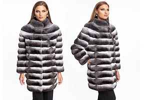 Image for The Incalculable Draw of a Chinchilla Coat with ID of: 4814327